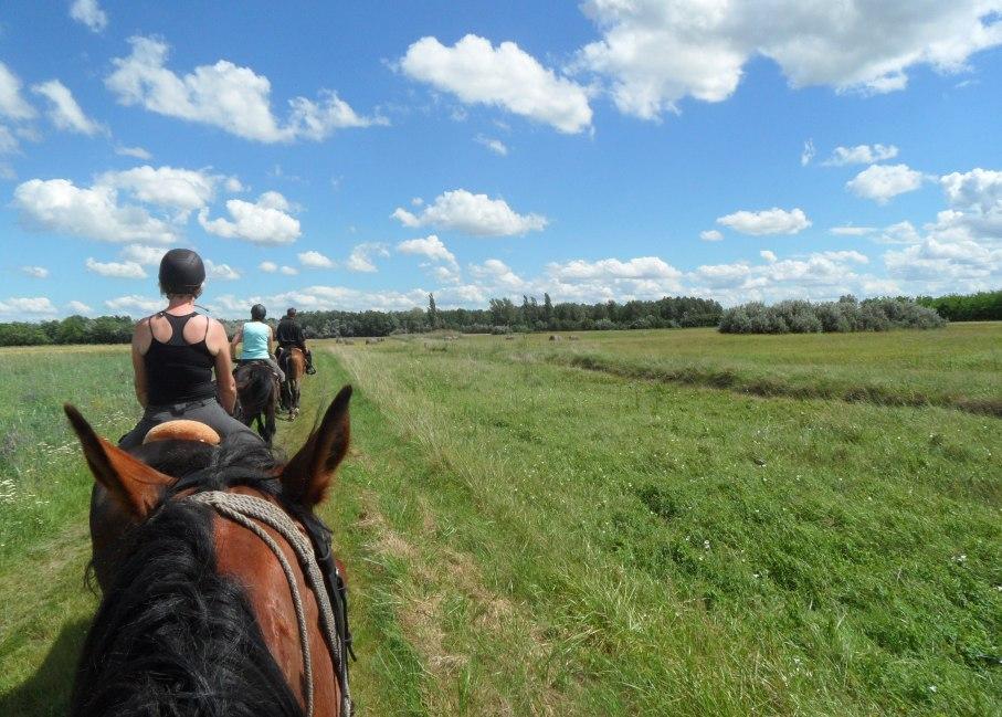 Farm Museum Ride